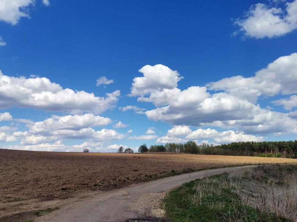 Идем по дороге вдоль поля...