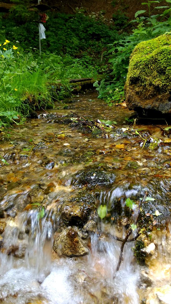 А ниже ближе к реке расположен родник, где мы набрали вкусной холодной воды.