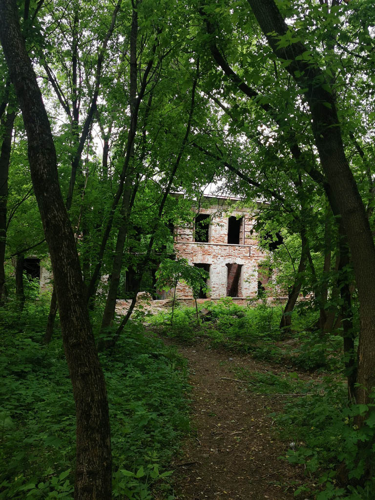 Рядом в заросшем парке виднеются руины здания, которое кто-то называет театром, а кто-то оранжереей. Правы и те и другие. Изначально здание выполняло обе функции.
