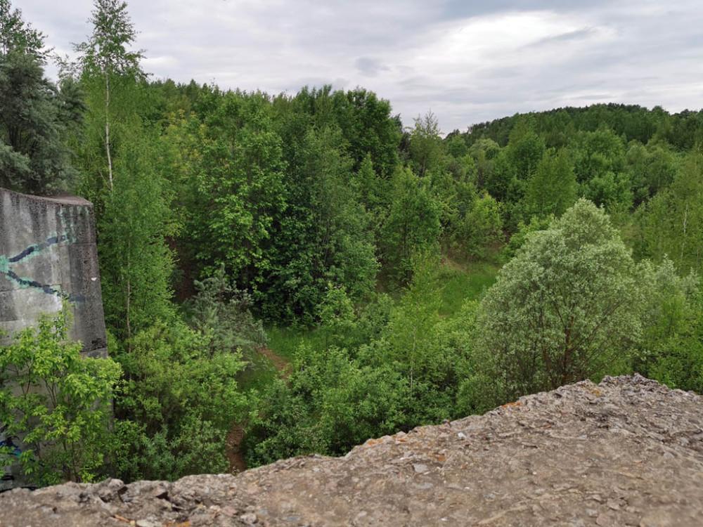 Здесь должно было плескаться море.. Дно проектируемого водохранилища уже заросло деревьям и кустарниками.