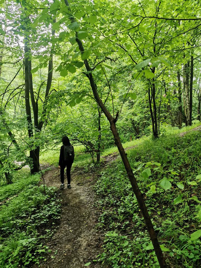 Через лес проходит овраг и логично предположить, что он доходит до реки. Поэтому идем по тропинке вдоль оврага.