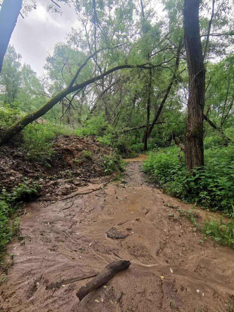 Дело в том, что в этом году с крутого высокого берега съехал вниз огромный пласт глины. А продолжительные дожди смыли значительную часть глины еще ниже на тропу.