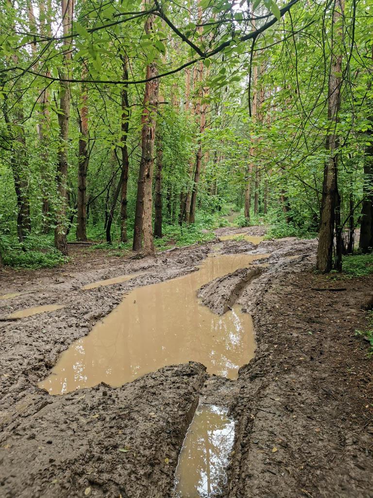 Если вы думаете, что глина осталась позади, то нет. Глиномесы на недотракторах в виде джипов и квадроциклов изгадили все тропки в лесу и около реки.