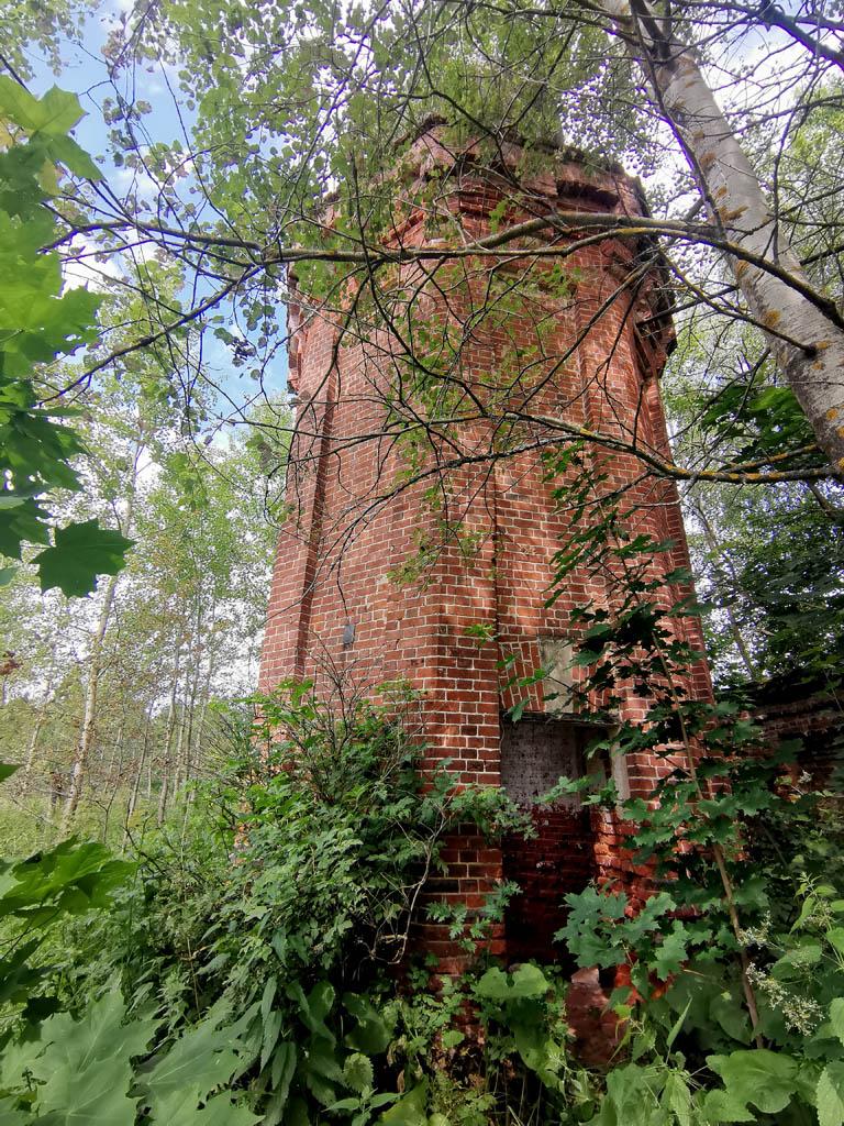 Водонапорная башня притаилась между деревьев...