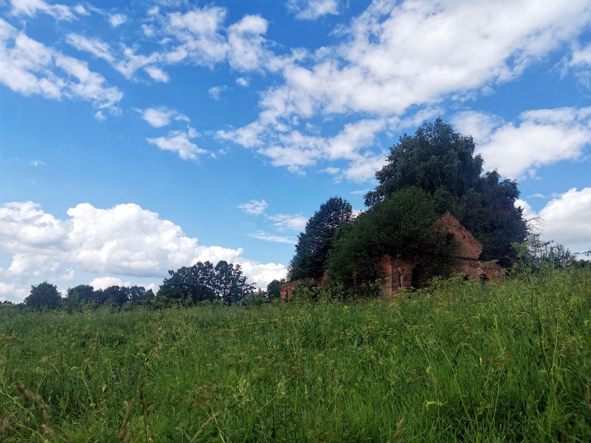 И снова по пояс и выше трава...