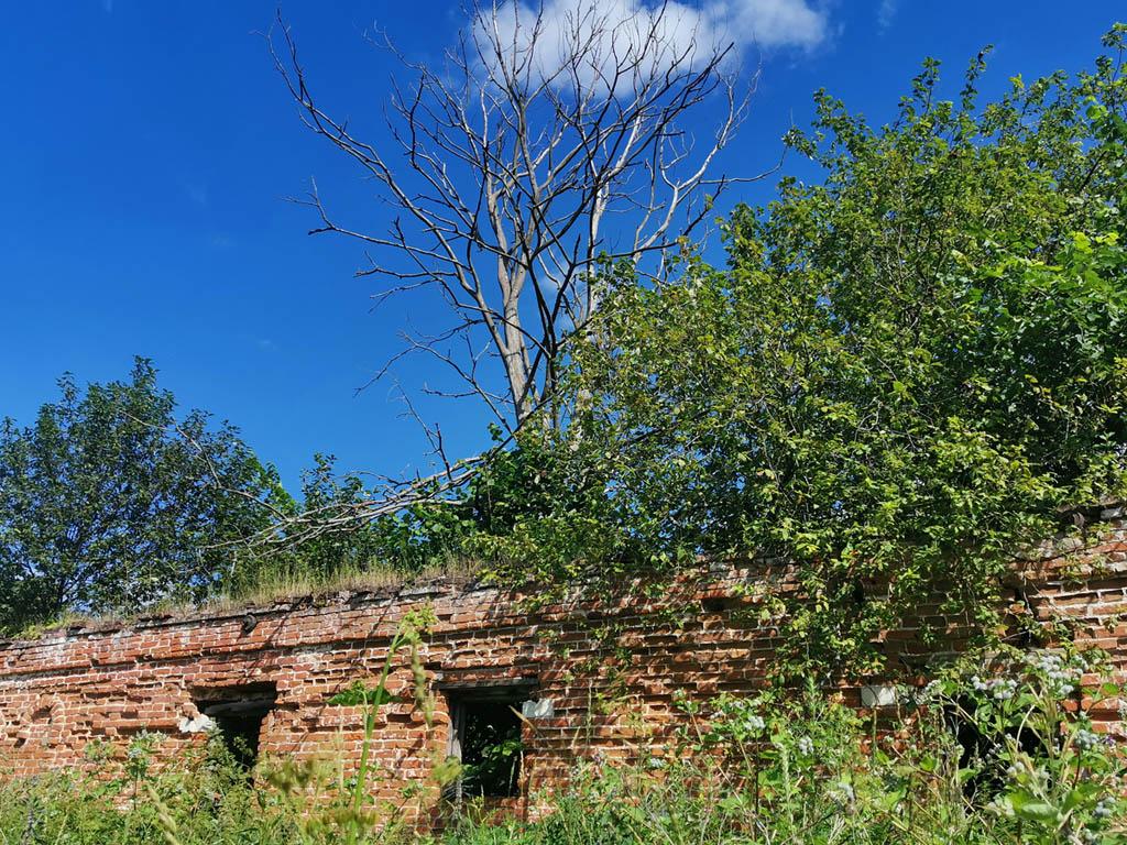 Руины флигеля.