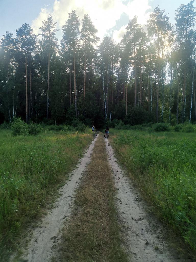 От села Суково через лес идем в сторону села Батайки.