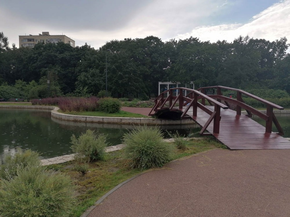 Пруды соединены узкой протокой. Через протоку перекинут деревянный мостик.