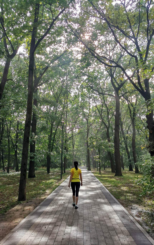 Парк «Дубки» после дождя