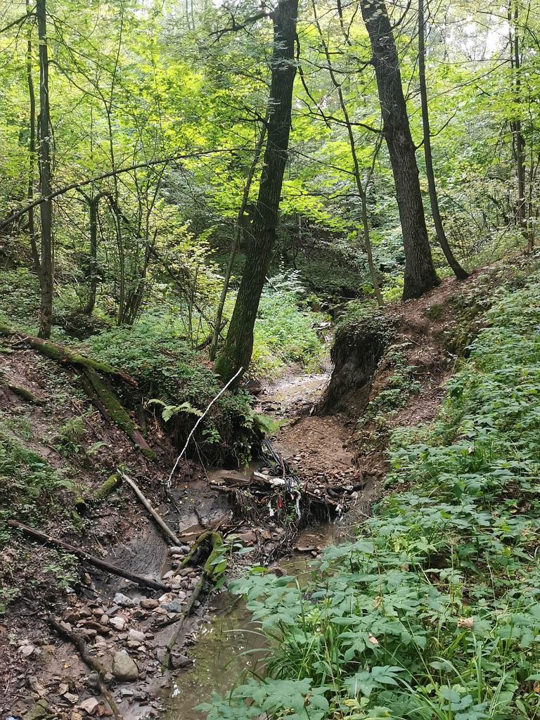 Этот ручей называется Большая Глинка (правый приток реки Городни)