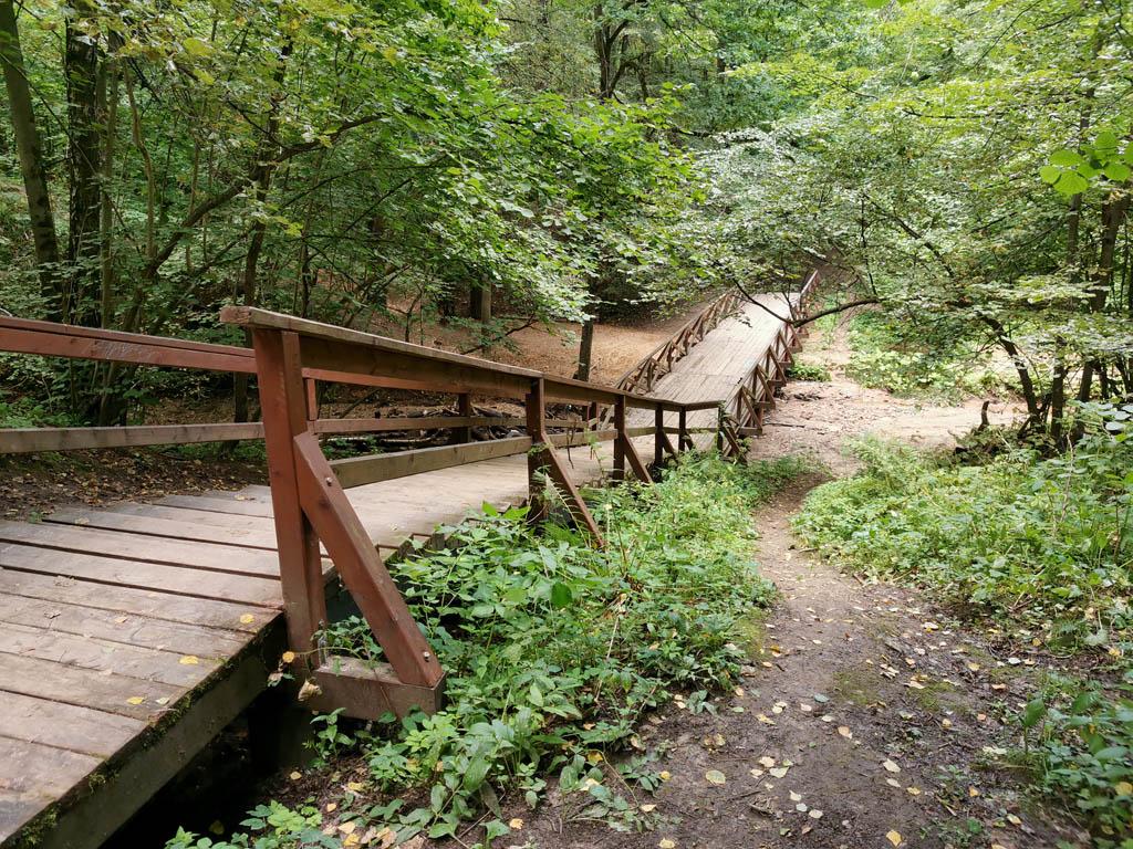 Пешеходный мост через Городню № 11 возле устья ручья Большая Глинка.