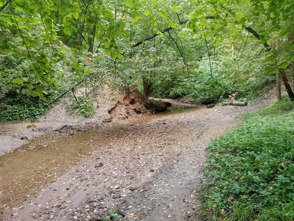 Спускаемся по крутому склону к руслу речки, что бы немного пройти вдоль самой воды и перейти на другой берег.