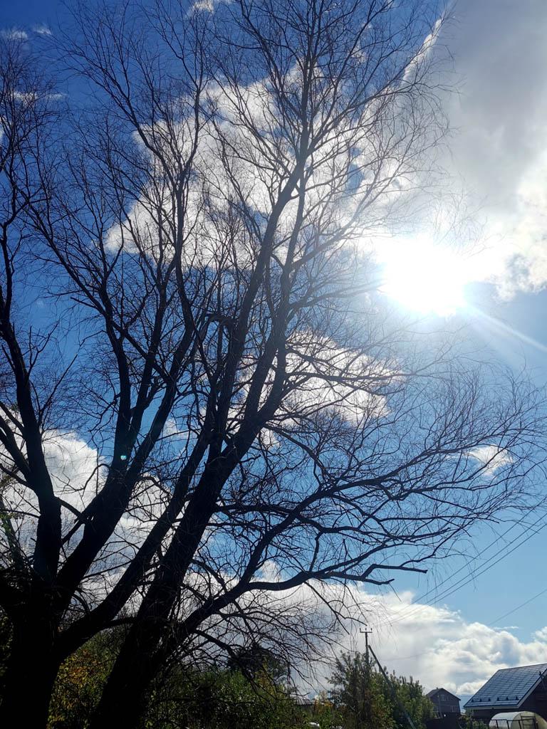 Снова солнце и синее небо.