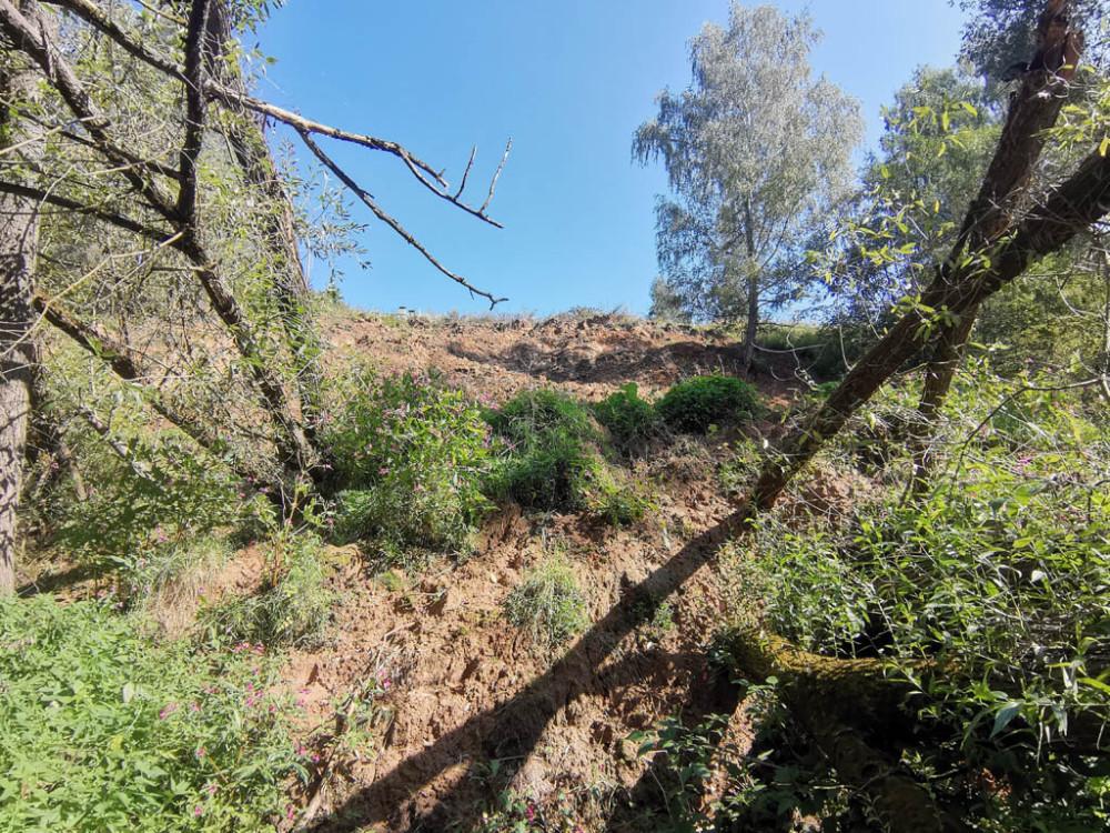 Оказалось, что пока нас не было, со склона сошел еще пласт глины, при этом повалив поперек дорожки несколько деревьев...