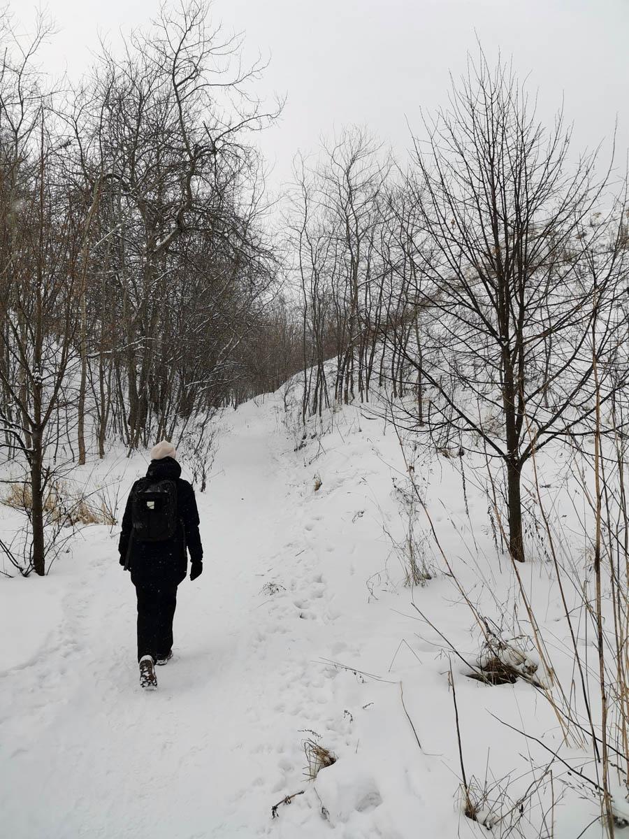 Прогулку по парку Коломенское начали вдоль Дьяковского оврага ...