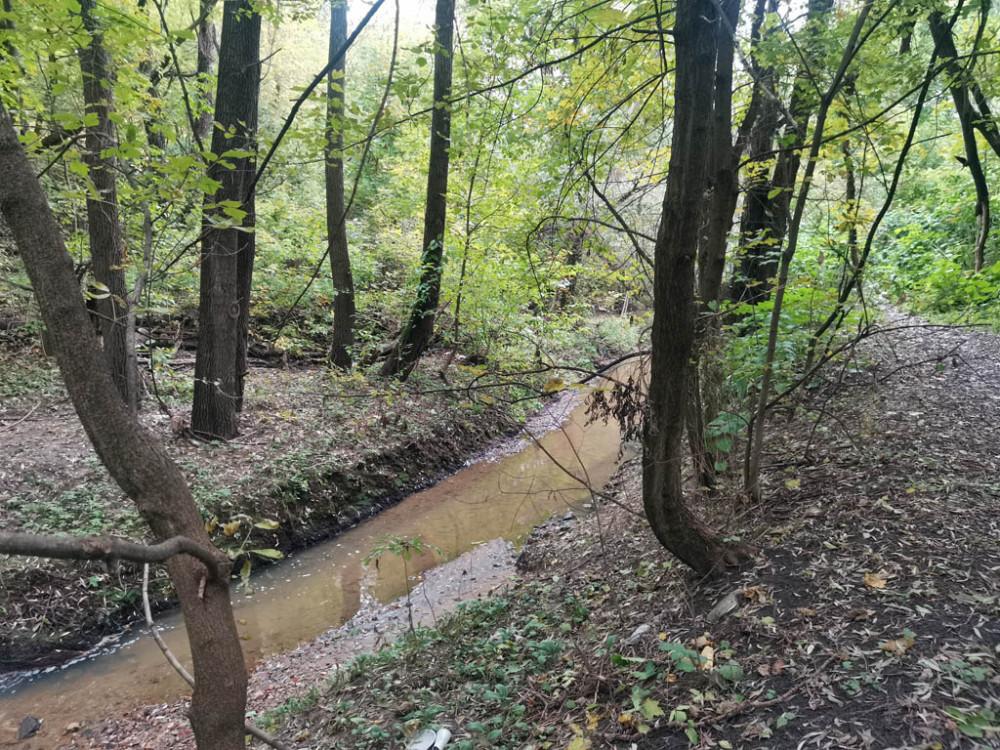 Река Коршуниха впадает в выше упомянутую Котловку