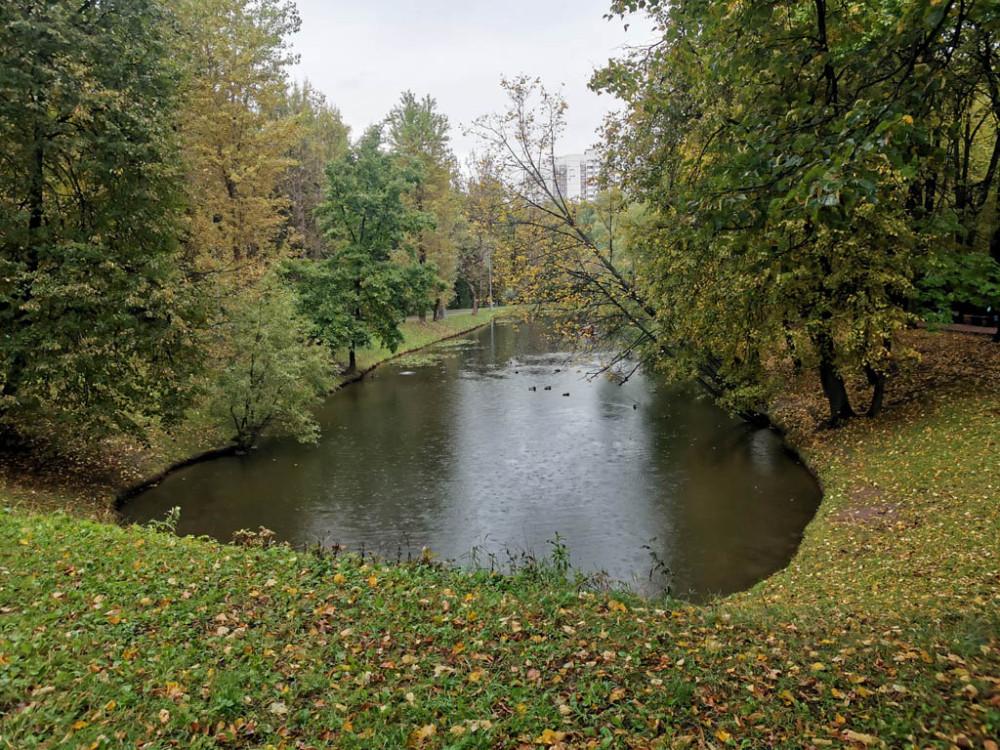 Всего в парке я насчитал 5 прудов.