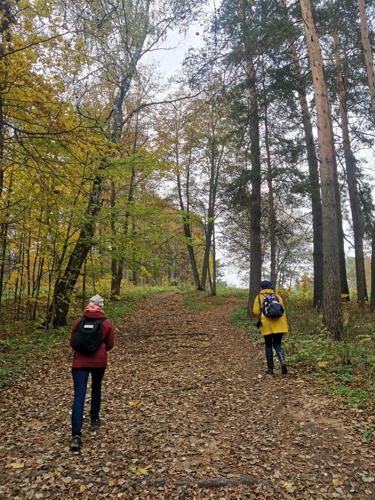 А мы поднимаемся на холм, где за деревьями виднеется замок...