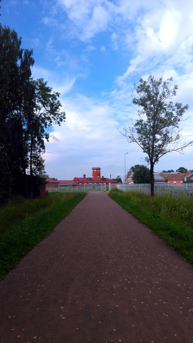 Вид на Императорскую ферму с территории Александровского парка. Хорошо видна башня Молочного павильона.