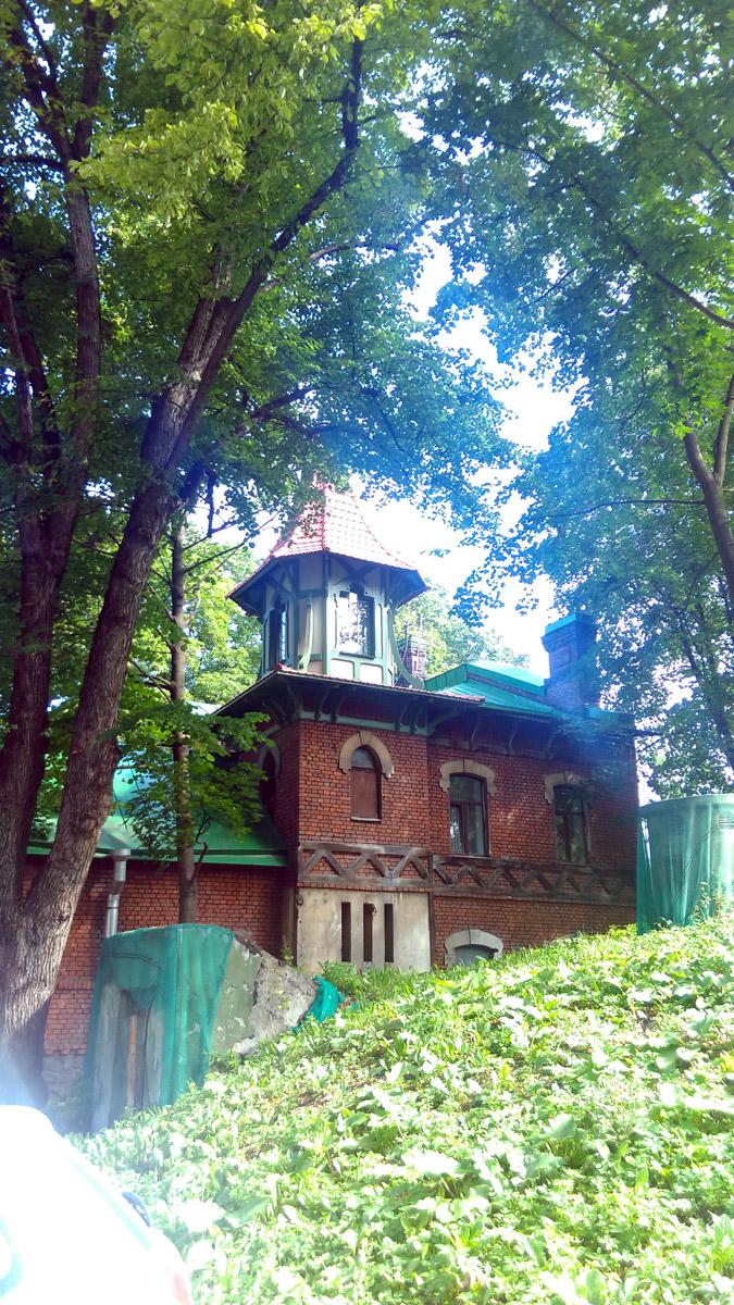 Под зеленой сеткой вход в бомбоубежище (холмик заросший травой)