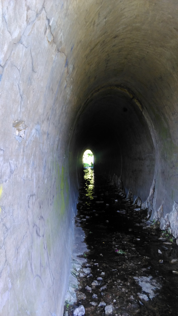 Свет в конце тоннеля (с)