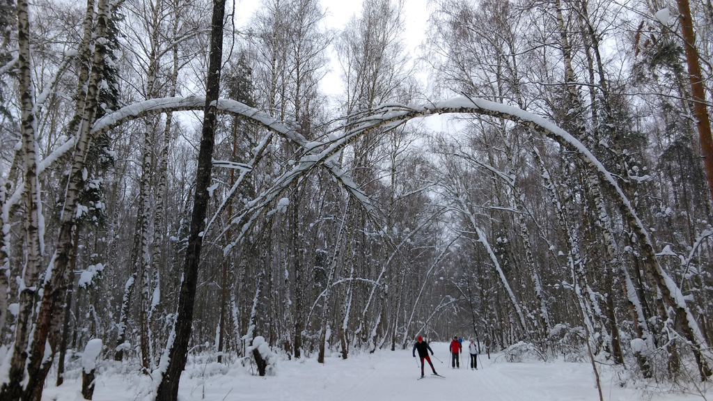 А пирамида расположена возле Ушмарского леса, где проложены прекрасные лыжные трассы.  I'm lovin' it!