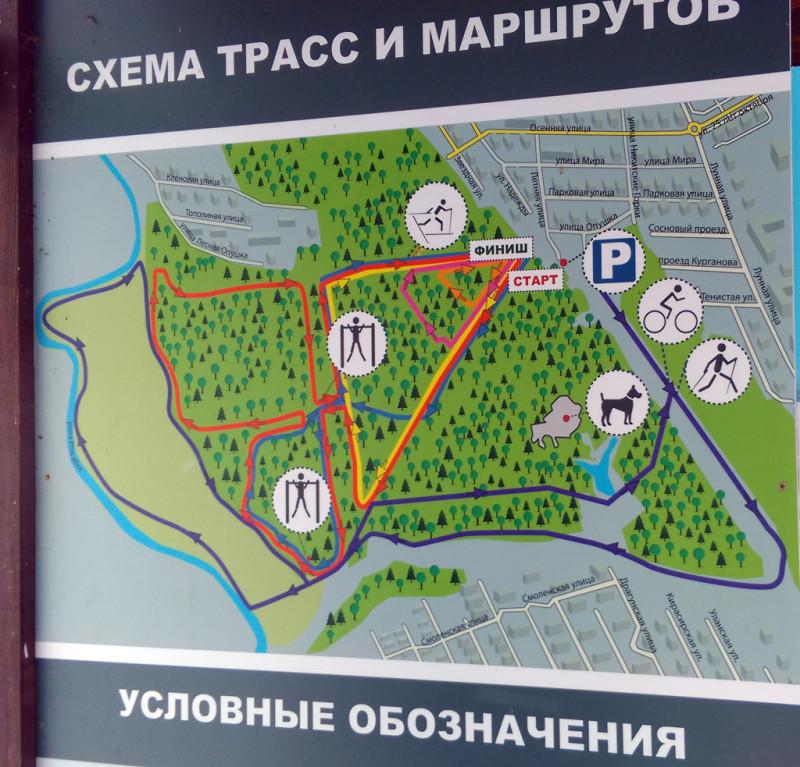 Схема трасс и маршрутов в Ушмарском лесу. Пирамида не обозначена. Она расположена в левом нижнем углу леса.