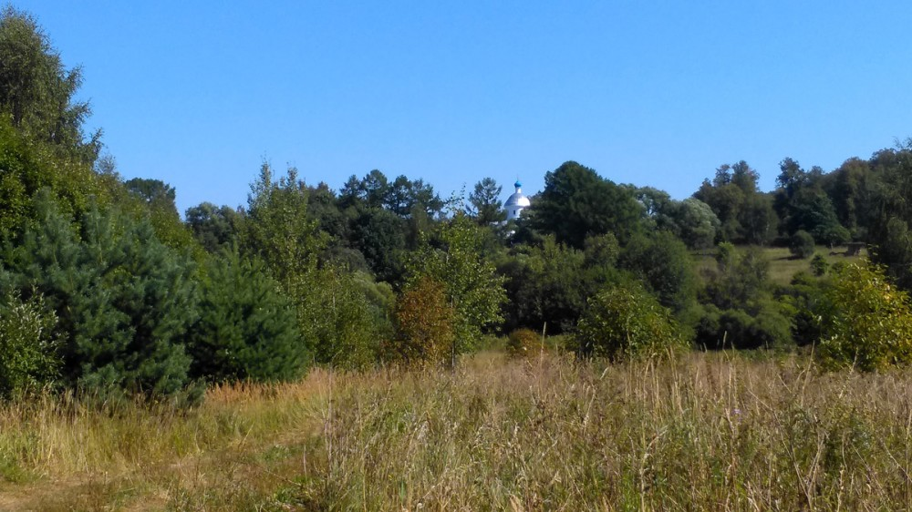 Уже на полпути над кронами деревьев увидел серебристый купол Церкви