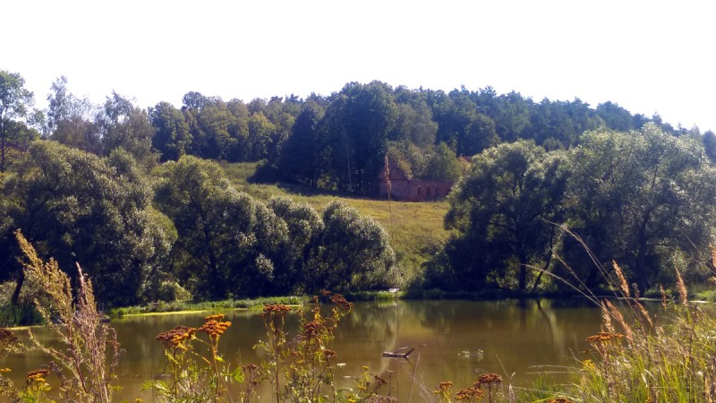 Уже на подходе к усадьбе с другого берега Алёшковского пруда видны руины строений.