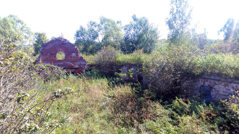 Руины то ли скотного двора, то ли амбара. Тоже, все поросло травой и кустарником.