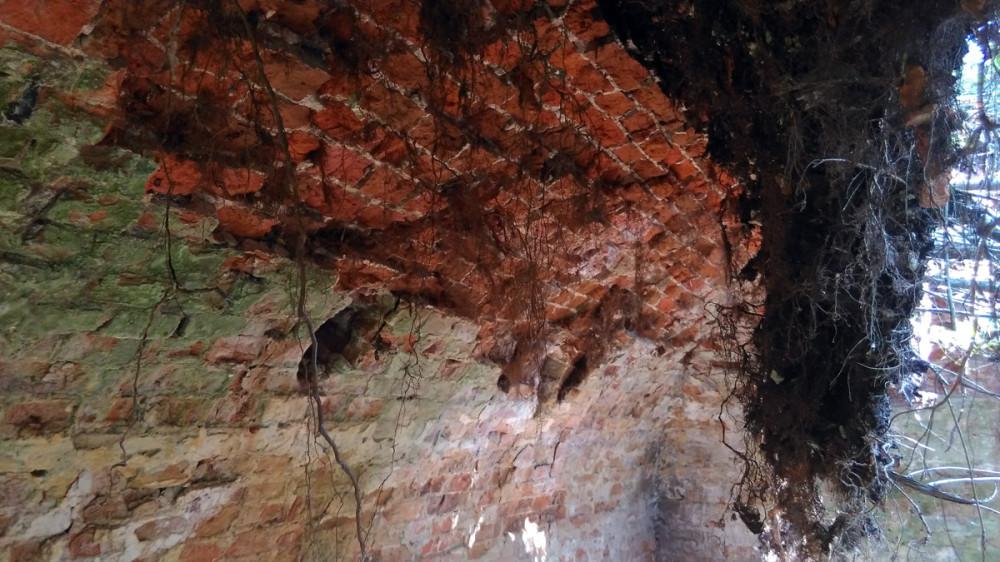 Просторный подвал с обвалившимся, полагаю в этом году, потолком.