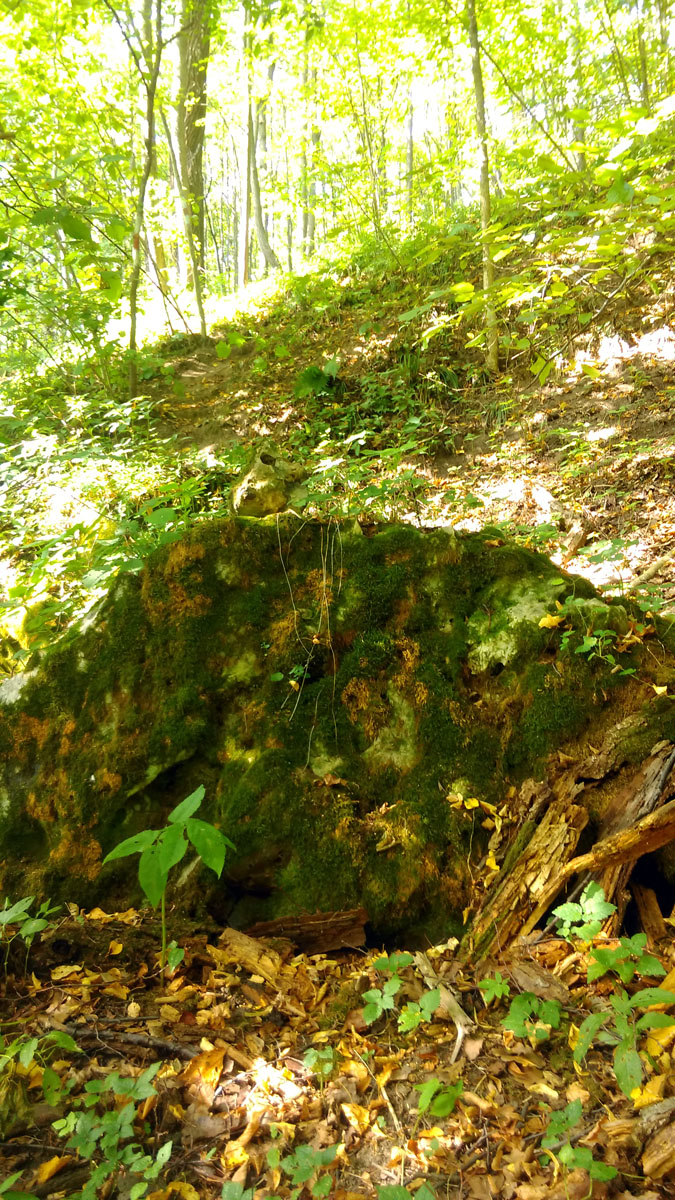 На склонах очень много огромных камней.