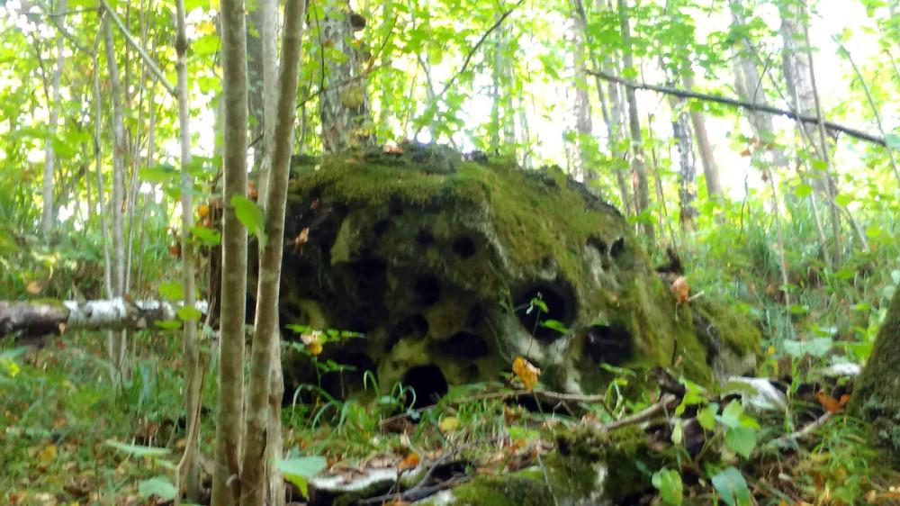Огромный камень с отверстиями.