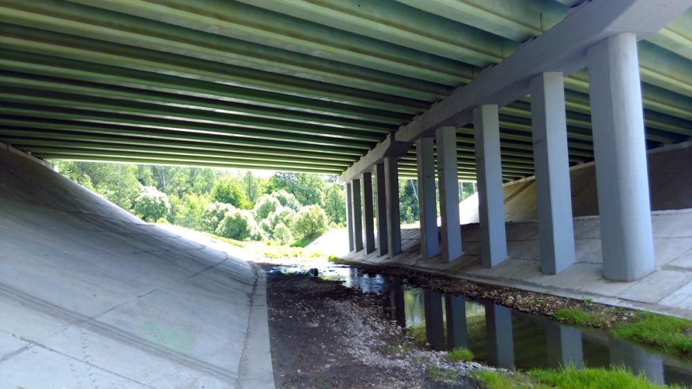Под мостом в это время года Рожайка больше похожа на ручеек...