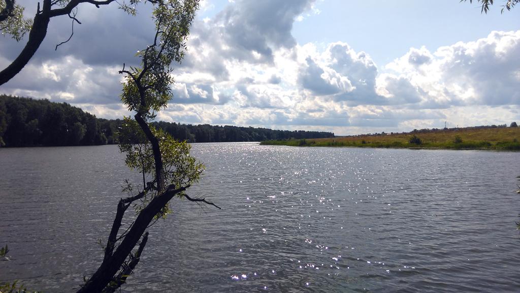 Пруд на реке Северка около села Растуново, Домодедовского района.