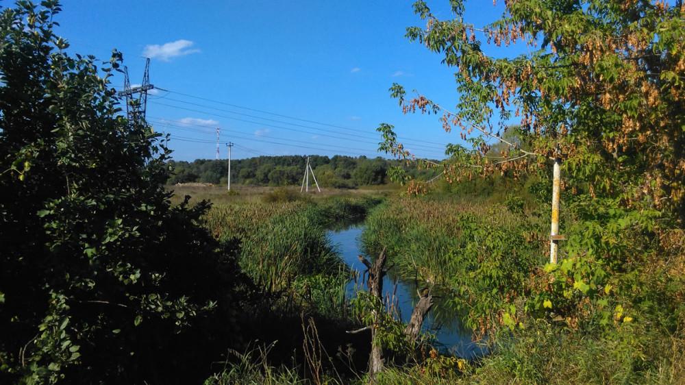 Река Десна рядом с селом Бурцево.