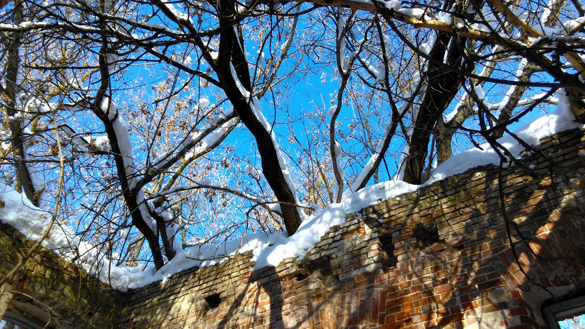 На самом деле это снег на стенах и ветках которые еще несколько лет и полностью крышу заменят.