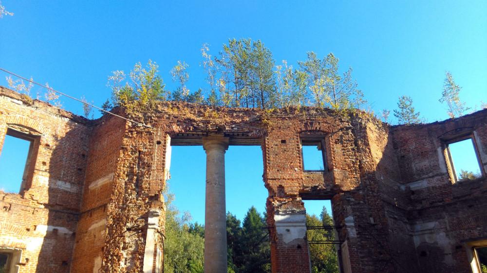 Главный дом начал приходить в упадок уже в конце XIX века. От деревянных конструкций: потолков, полов, а также рам, дверей ничего не осталось. Были разобраны и печи. В 1930-х годах купол дворца и деревянные перекрытия обрушились. В 1941 году дворец пострадал от взрыва снаряда.