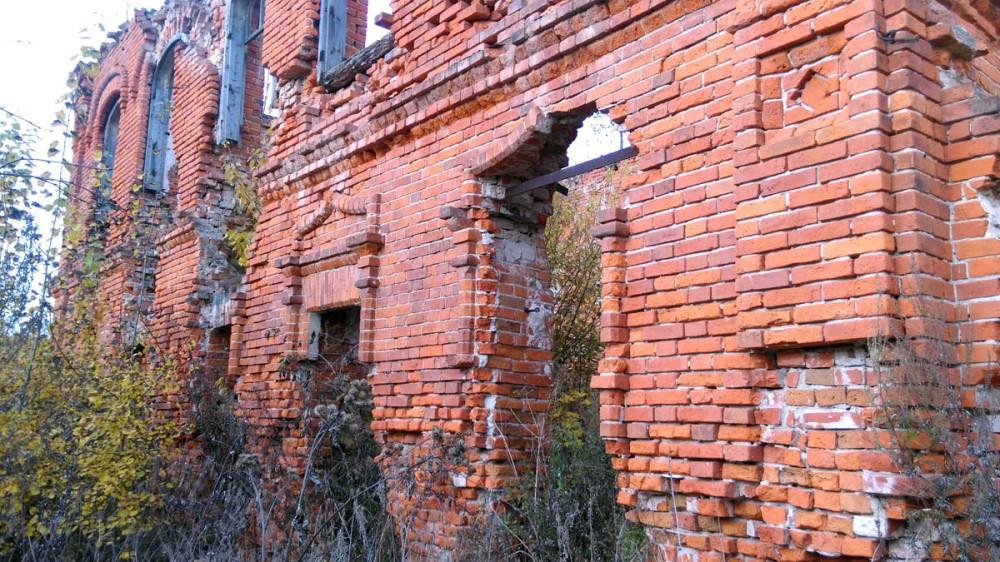 Здание снаружи и внутри заросло кустарником.