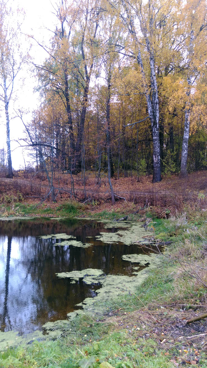 С двух сторон кладбища небольшой водоем запруженный в овраге.