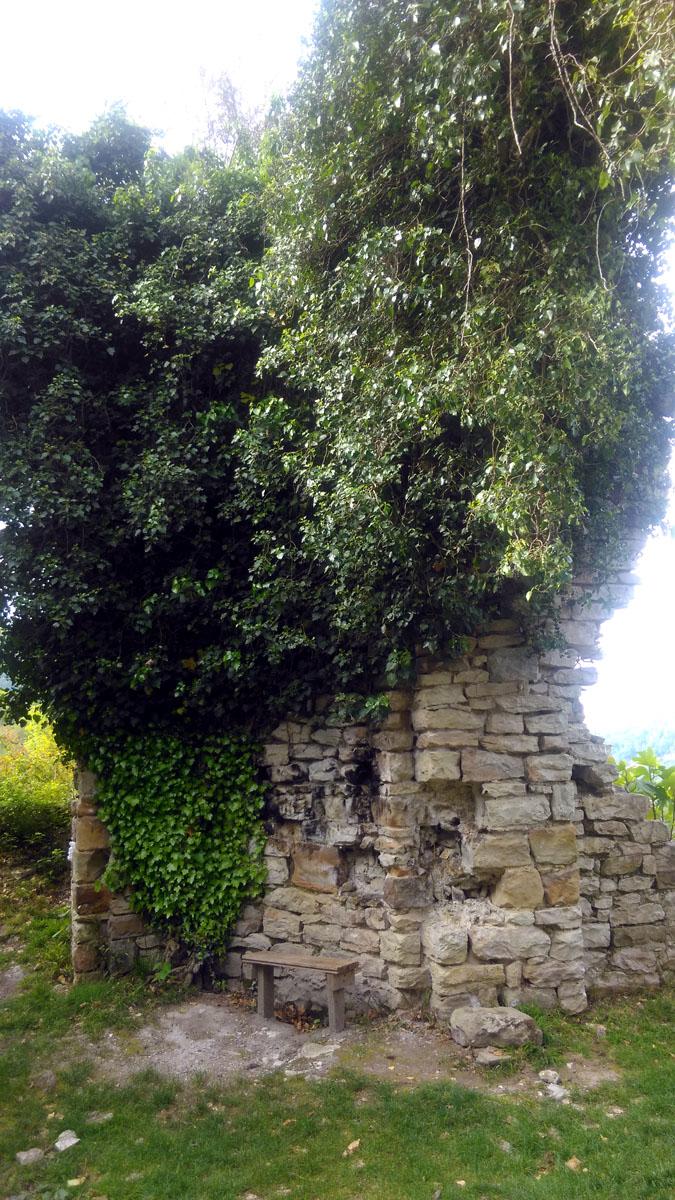 Стены красиво обрамлены лианами.