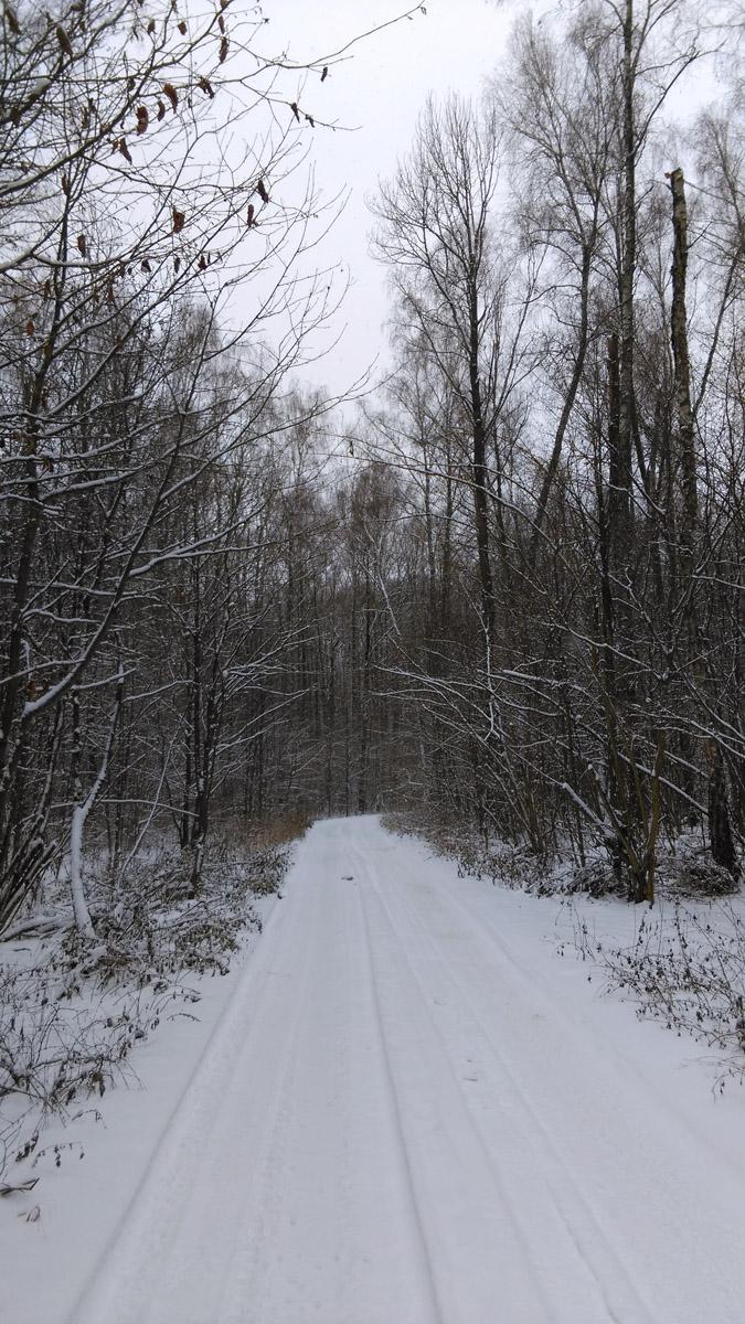 Я продолжаю путь через поля, а потом и лес. Лес не дремучий, кругом него и в нем расположены многочисленные СНТ и КП. Проплутав немного между их заборами вышел к трассе.