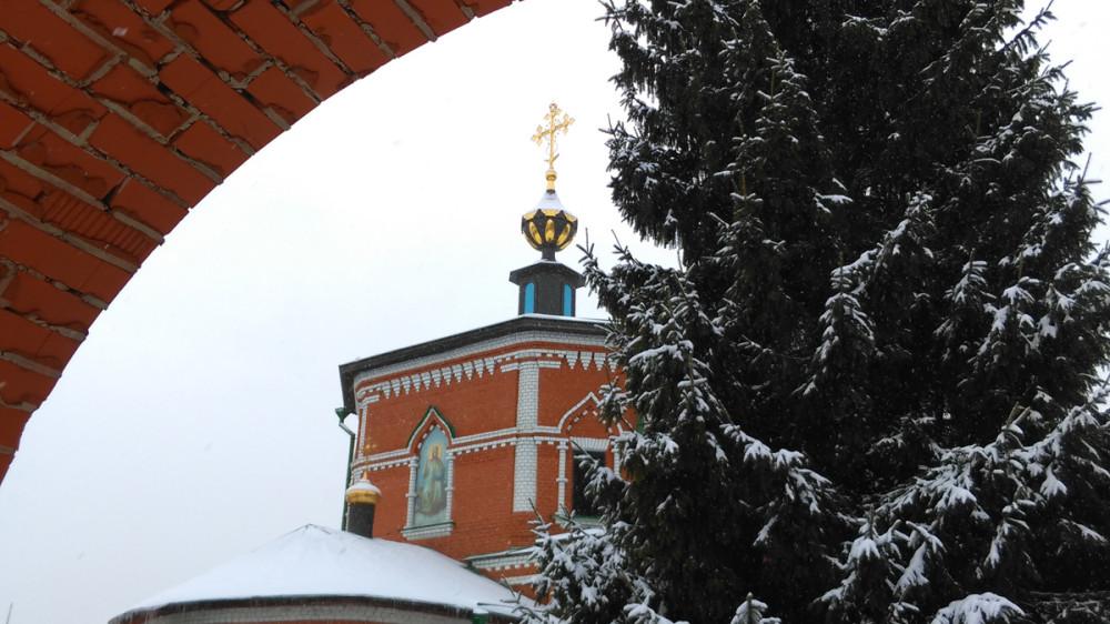 За стройными елями виднеется Храм Рождества Пресвятой Богородицы.