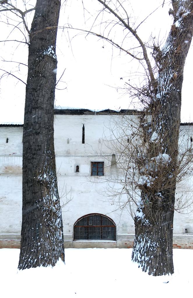 Окно в крепостной стене между двух величественных деревьев, раньше было вратами, насколько я понял.