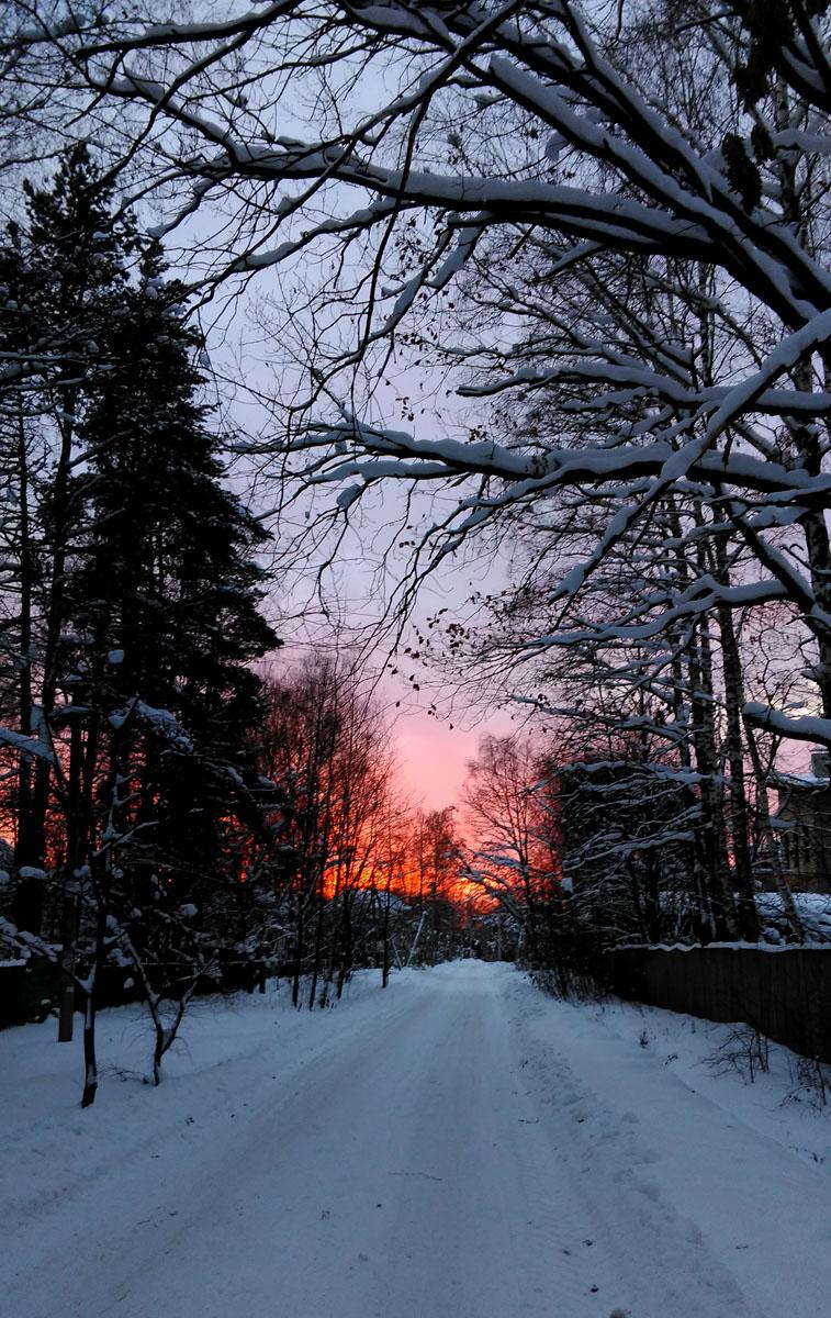 8 января 2019. И снова, ненадолго из-за надоевших серых облаков выглянуло солнце. но снова тут же спряталось в закате...