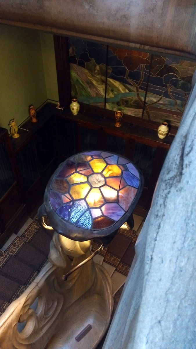 Точнее, это снизу она медуза, а сверху вполне себе, черепаха.