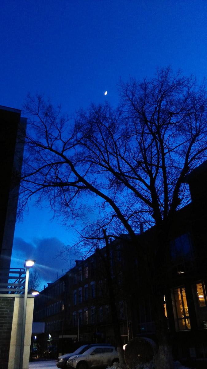 Просто вечернее московское небо...