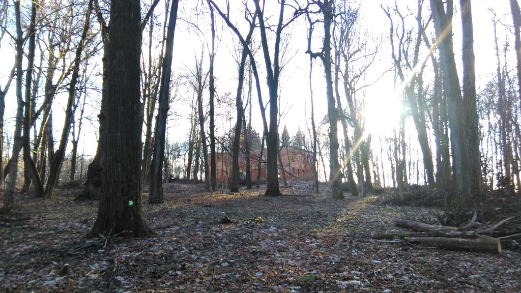 В ушедшем году была проделана огромная работа по вырубке кустарника и молодняка. И теперь руины здания видны издалека.