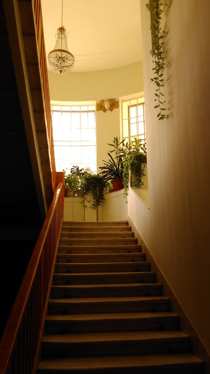 Лестница на второй этаж и цветы на подоконниках...
