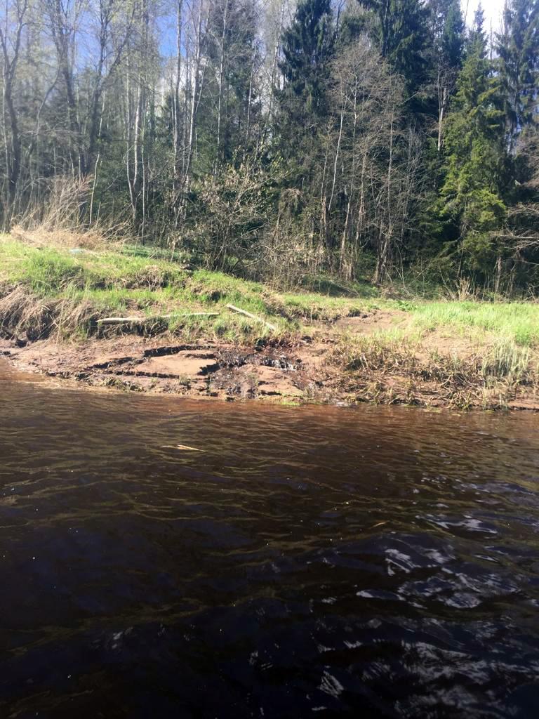 А дальше... Унылая пора! Очей очарованье! (с) Вспоминали мы строчки Пушкина, но не про время года, а про окружающий нас пейзаж... Около десяти километров по почти прямой реке окруженной чахлыми елками и пожухлой травой... И через каждые 20-30 метров с обеих берегов стекал ручеек, то больше, то меньше по размеру немного внося разнообразие...
